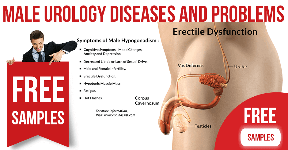 Male Urology Diseases and Problems