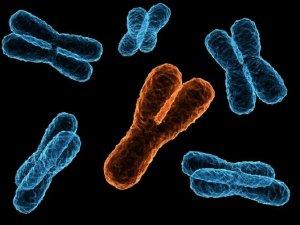 Genetic illnesses