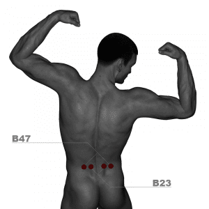 Acupuncture points B47 and B23